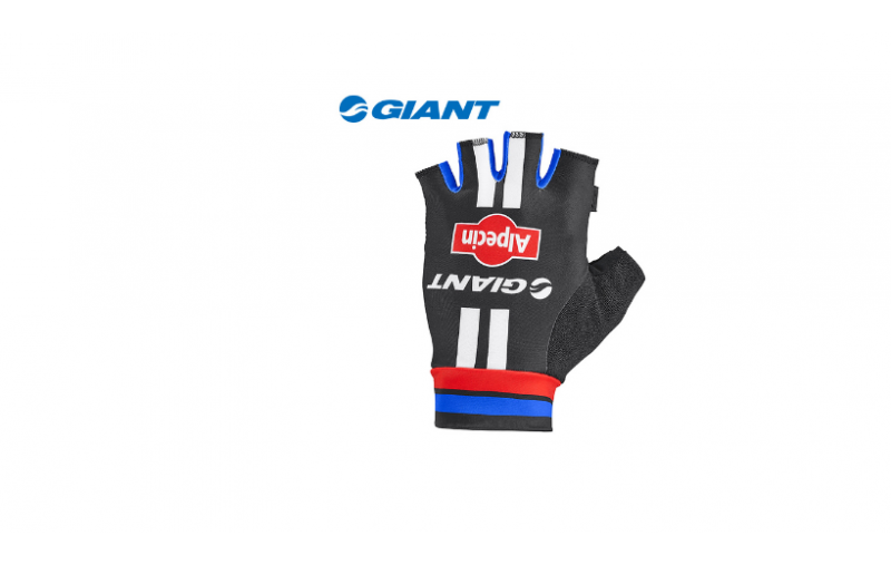 GĂNG TAY GIANT-ALPECIN TEAM GLOVE MY2016