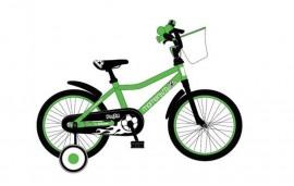 Xe đạp trẻ em 2016 IFUN 316B